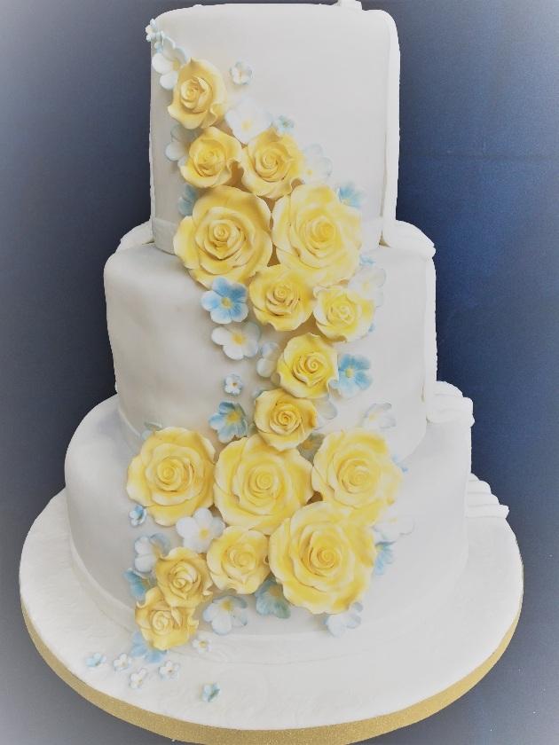 Meet Jenny Leeb-Du Toit from Cakes Especially