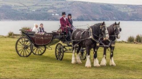 Ceir y Cardi Wedding Transport
